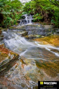 Photography Course Sydney Blue Mountains
