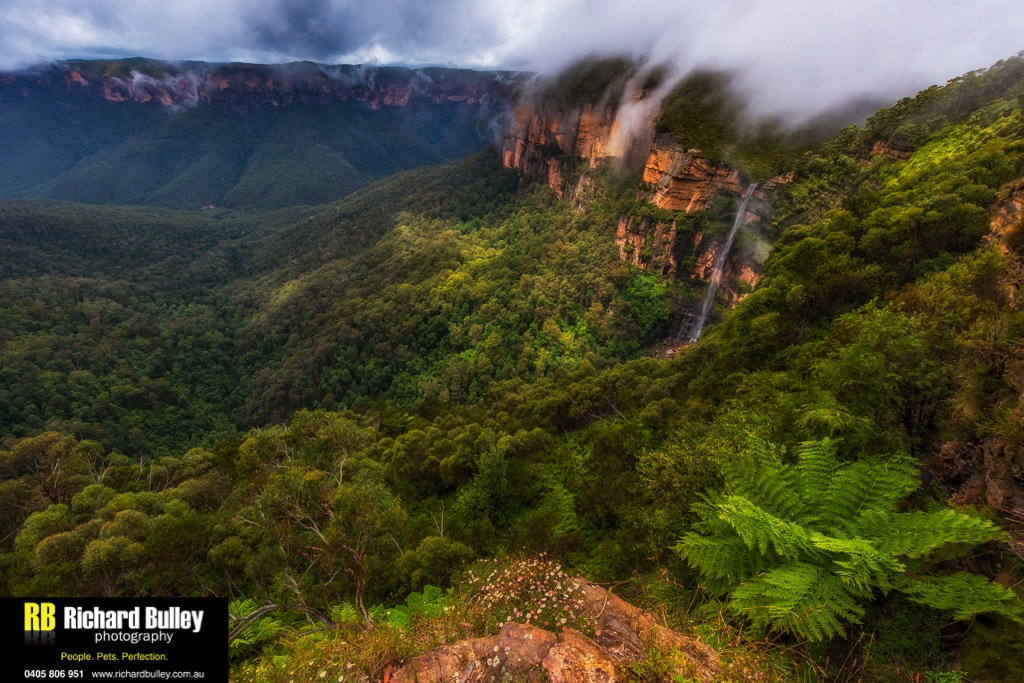 Blue Mountains Photography