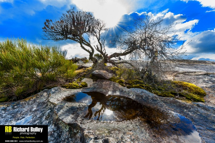 Landscape Photography Course Blue Mountains
